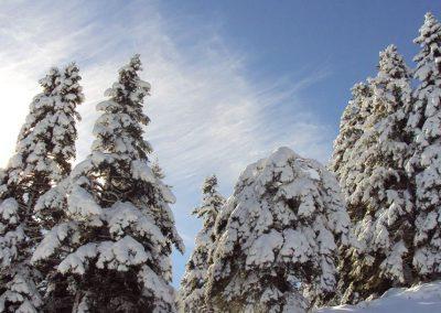 Kalavryta Backcountry Ski with Orias