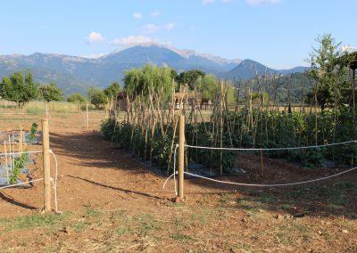The Farm at Orias